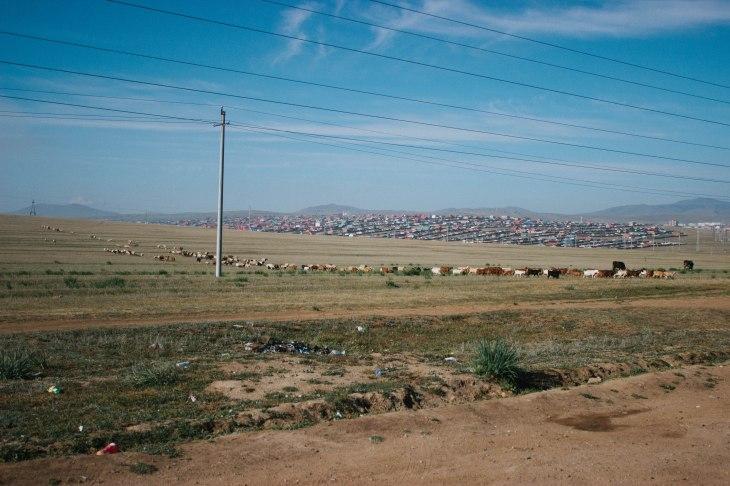 mongolia-161