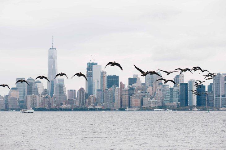 newyork-11