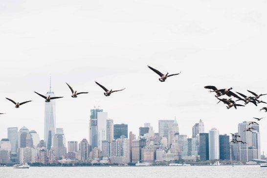 newyork-12