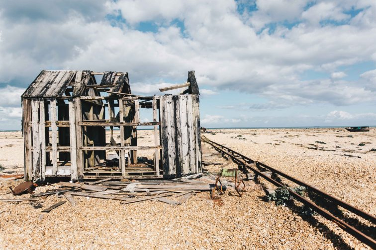 dungeness-83