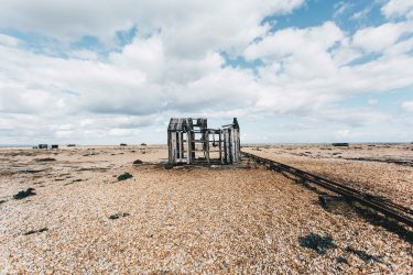 dungeness-87