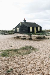 dungeness-89